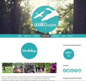 wildgoose screen grab 3